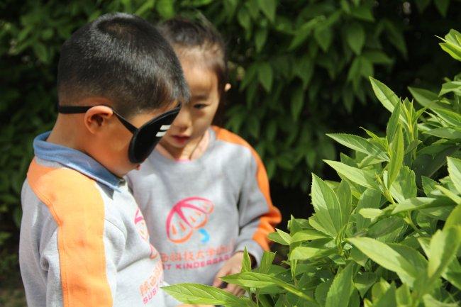 亲近 自然 ,触摸春天 之 盲行 之旅 陕西科技大学幼